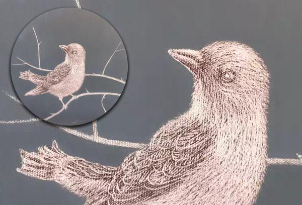 Scratchboard Bird Portrait