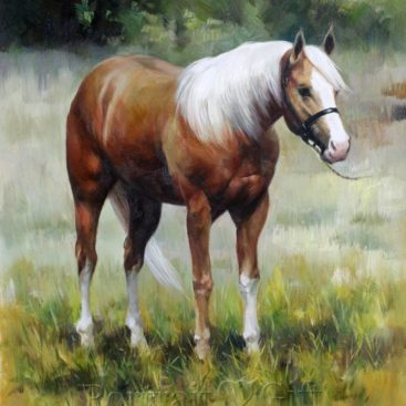 A Brown and White Horse