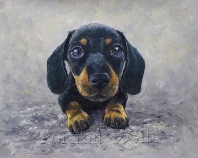A Little Black Dog