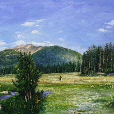 Countryside Scenery near Mountains