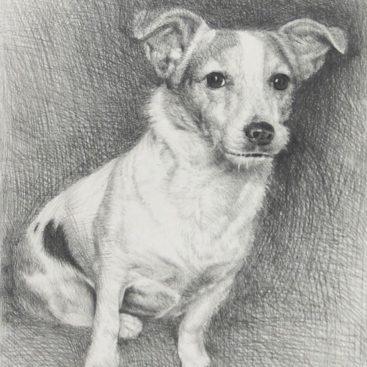 Dog Pencil Sketch Gift