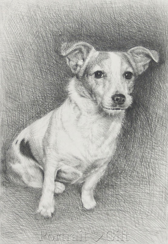 Dog Pencil Sketch Gift